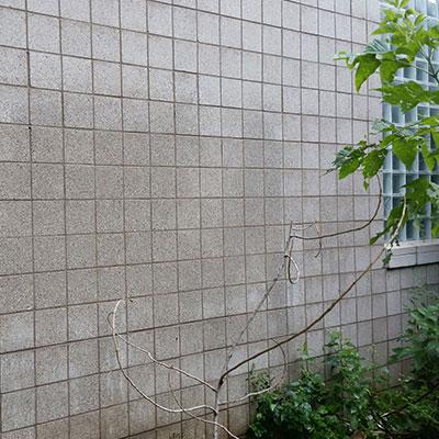 verwijderen graffiti 2